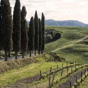 The Brunello Gourmet Trekking