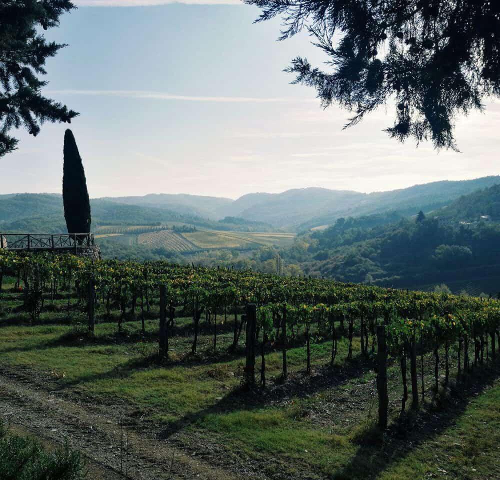 Chianti classico wine tasting tours