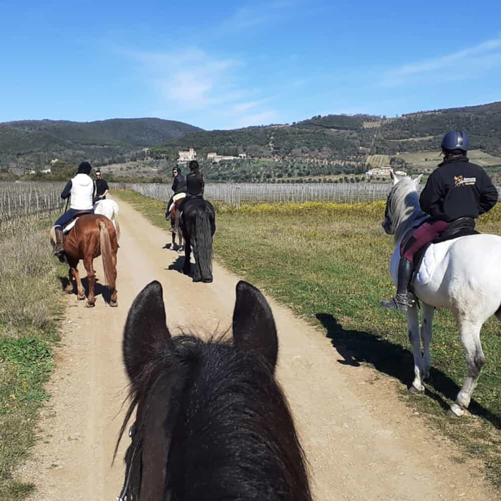 tourists riding horses in tuscany