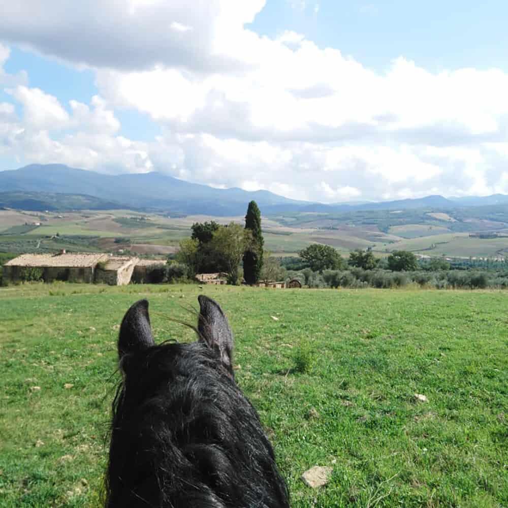 horseback riding Montalcino Tuscany