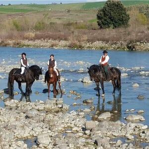 Horseback Trekking  Tour for Experts in Montalcino