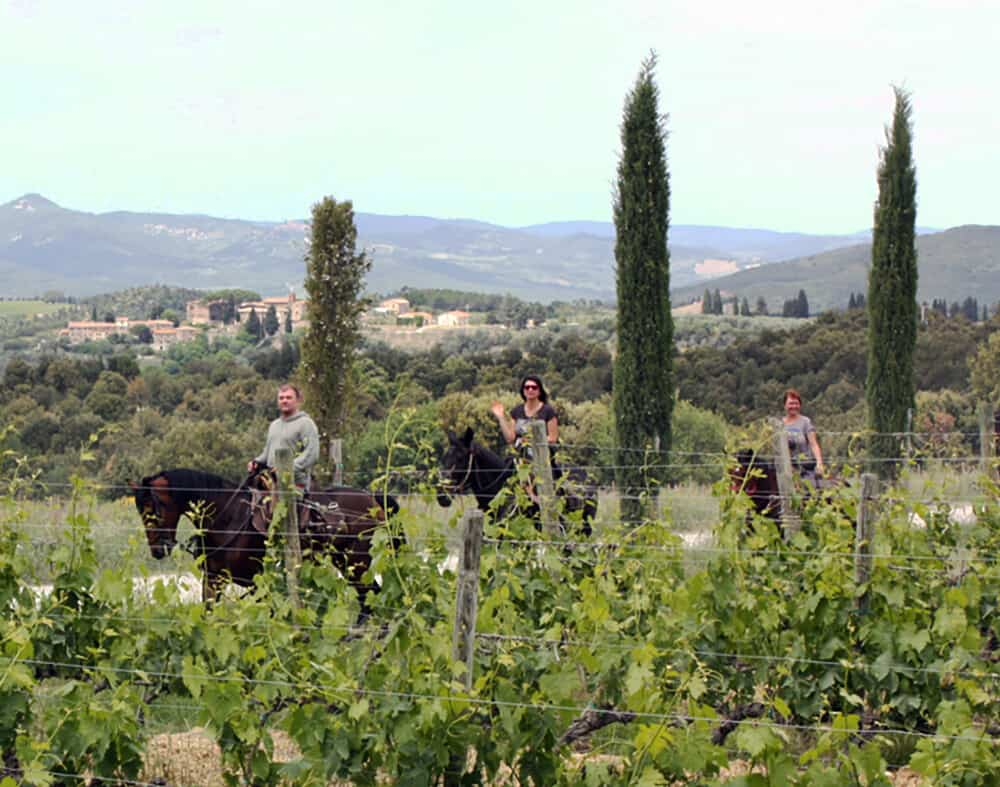 An horseback riding tour in Montalcino
