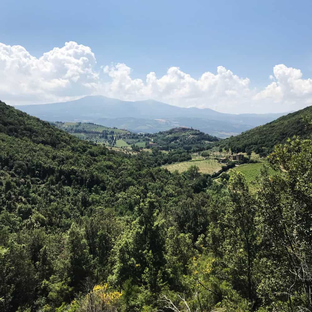 The trekking tour from Montalcino to Sant'Antimo