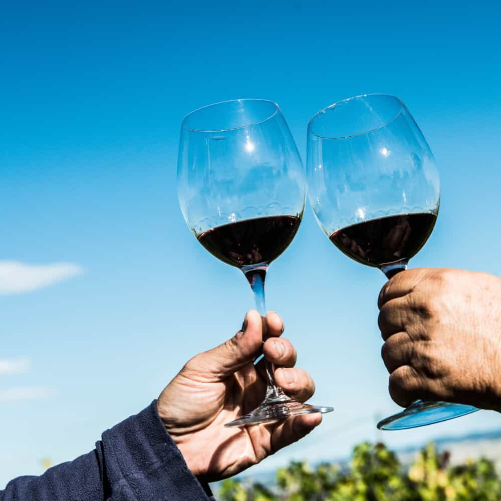 montepulciano wine tasting tour