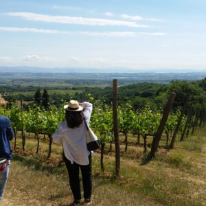 Pienza and Montepulciano Cheese and Wine Tour