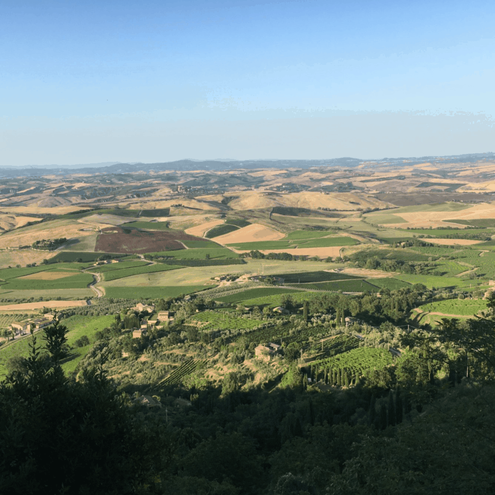 The Val d'Orcia seen from Montalcino