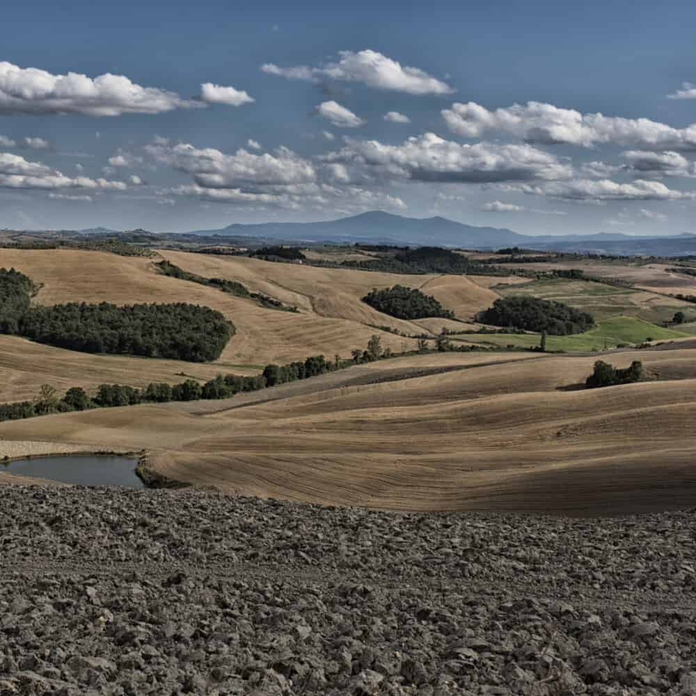 Rolling Tuscan hills in Val d'Orcia tour