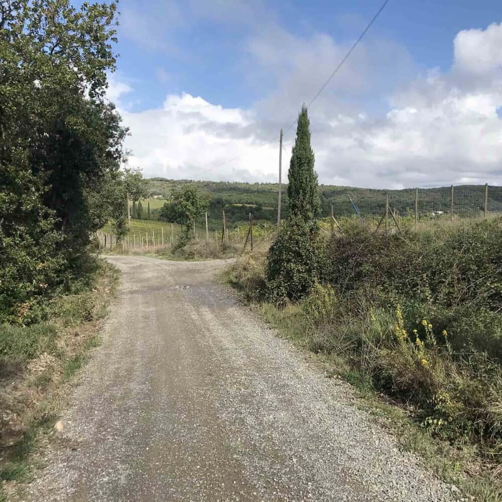 Brunello di Montalcino hiking trails wine tour