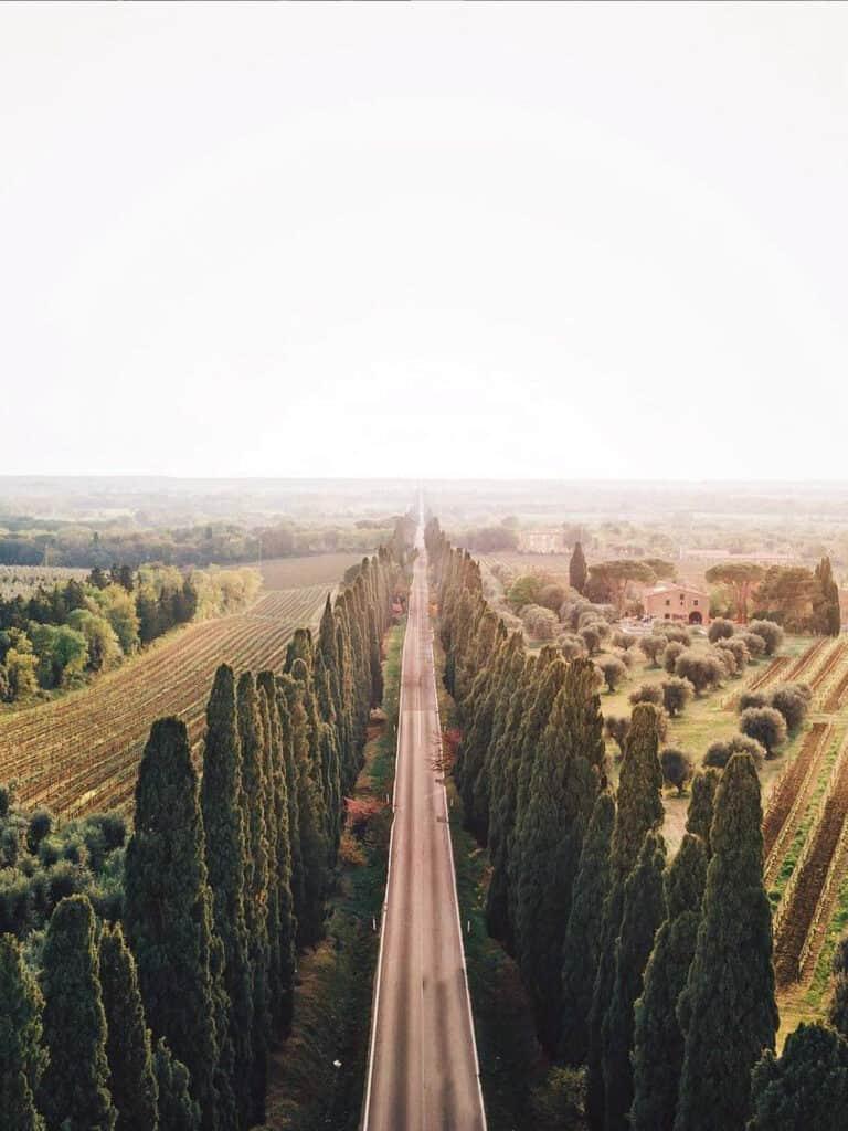 Bolgheri & The Tuscan Coast - Montalcino Wine Tours