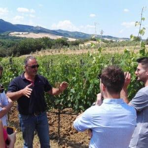 Brunello Wine Tour Adventures