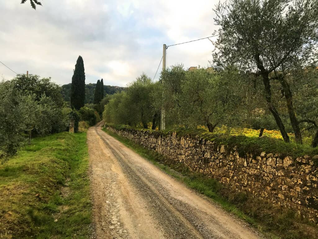 The Top 3 Hiking Trails Around Montalcino